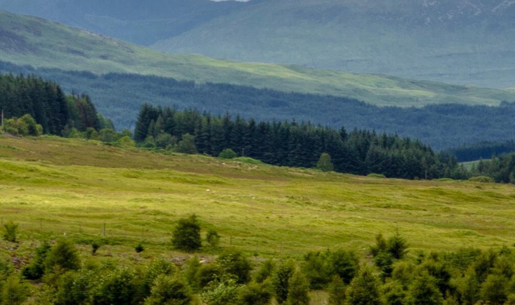 Image West highland way