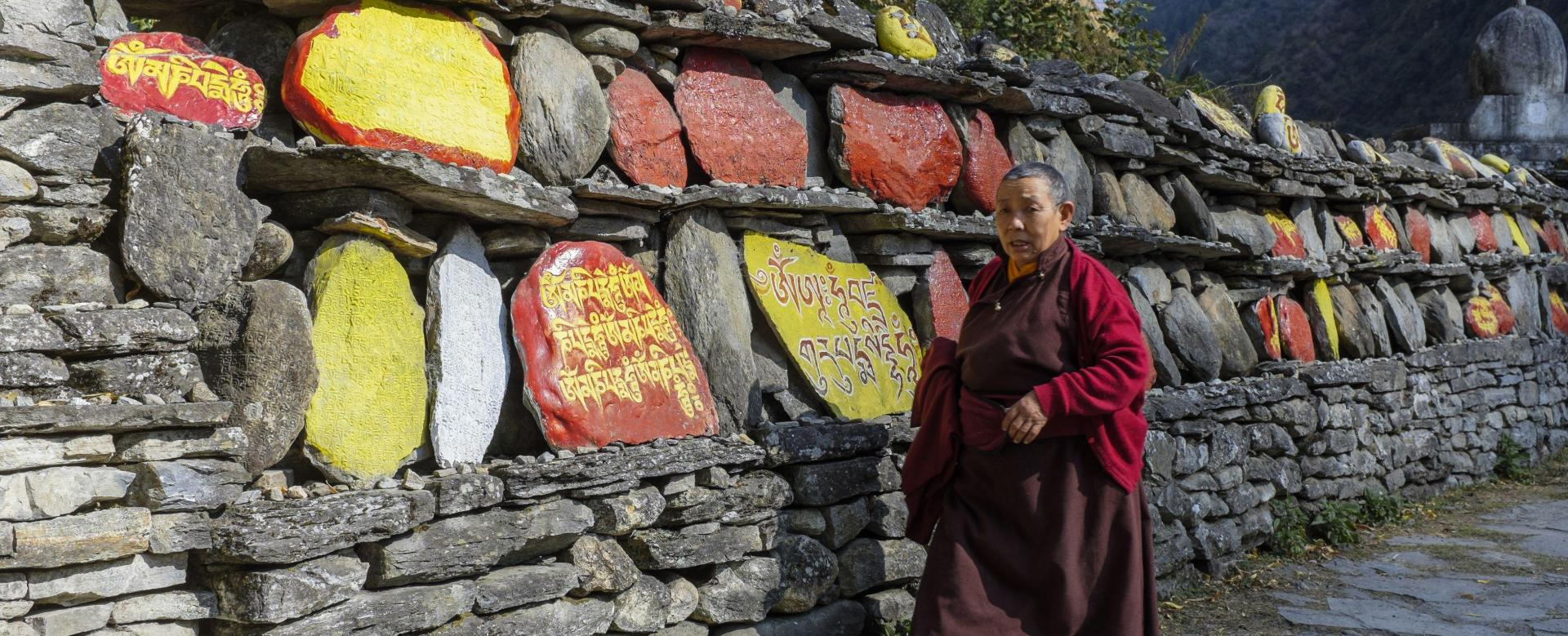 Voyage à pied Nepal : L'intégrale du manaslu aux annapurnas