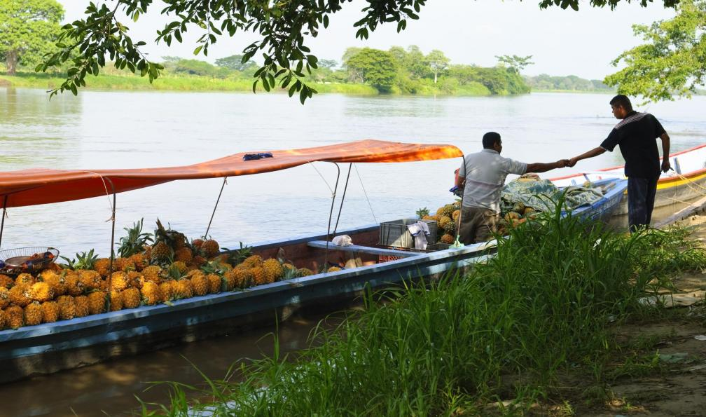 Image Charmes colombiens