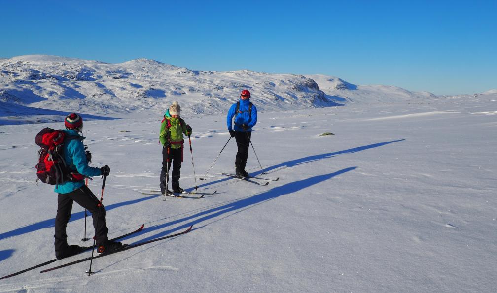 Image Laponie suédoise : la voie royale à skis