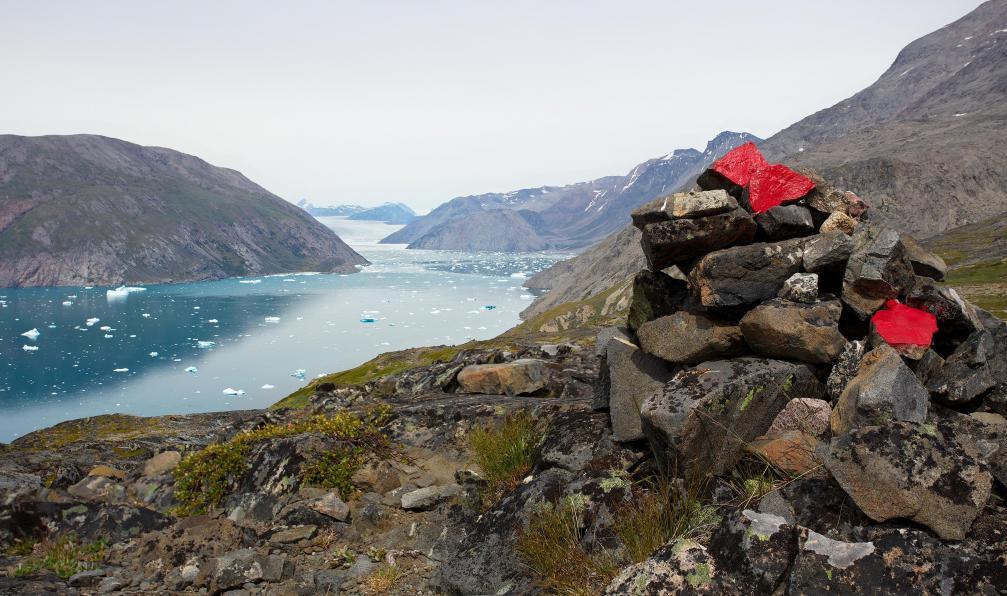 Image Groenland sud : icebergs et glaciers