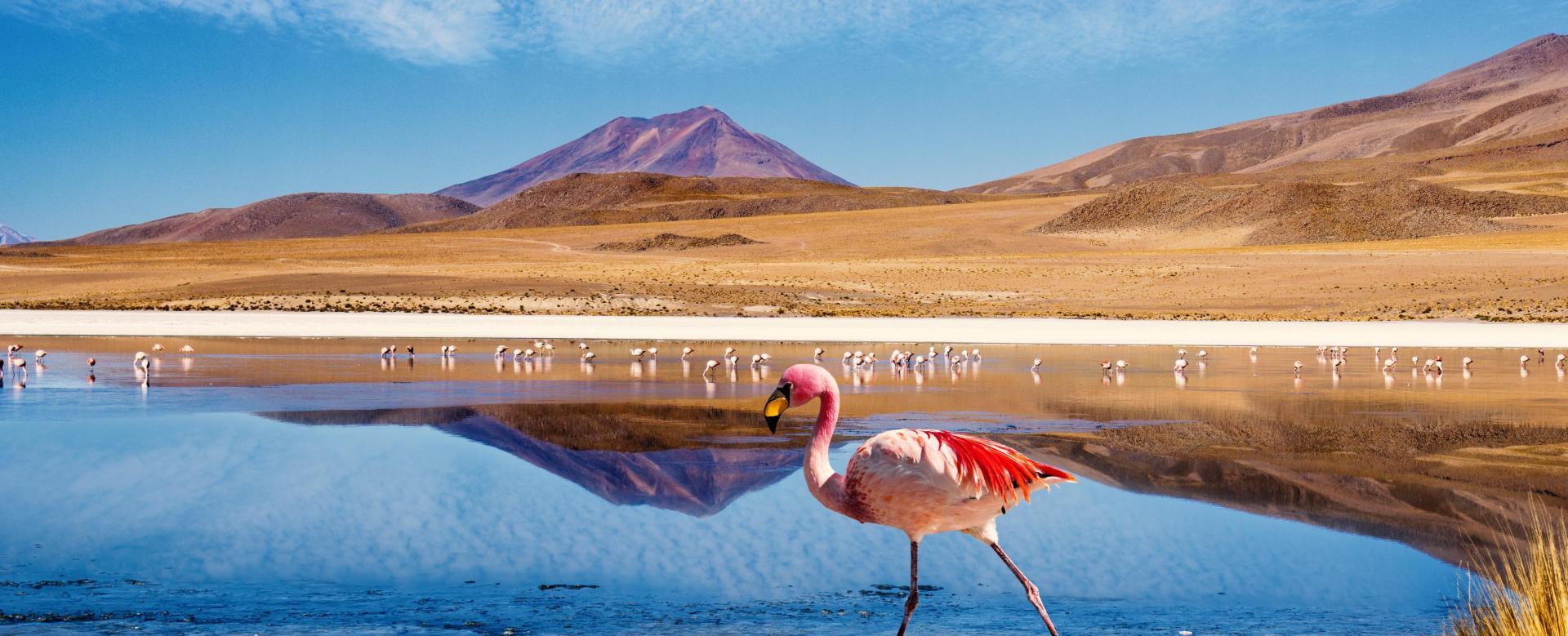 Voyage à pied Chili : Les déserts des andes centrales