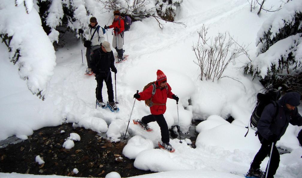 Image Panoramas du mont-blanc