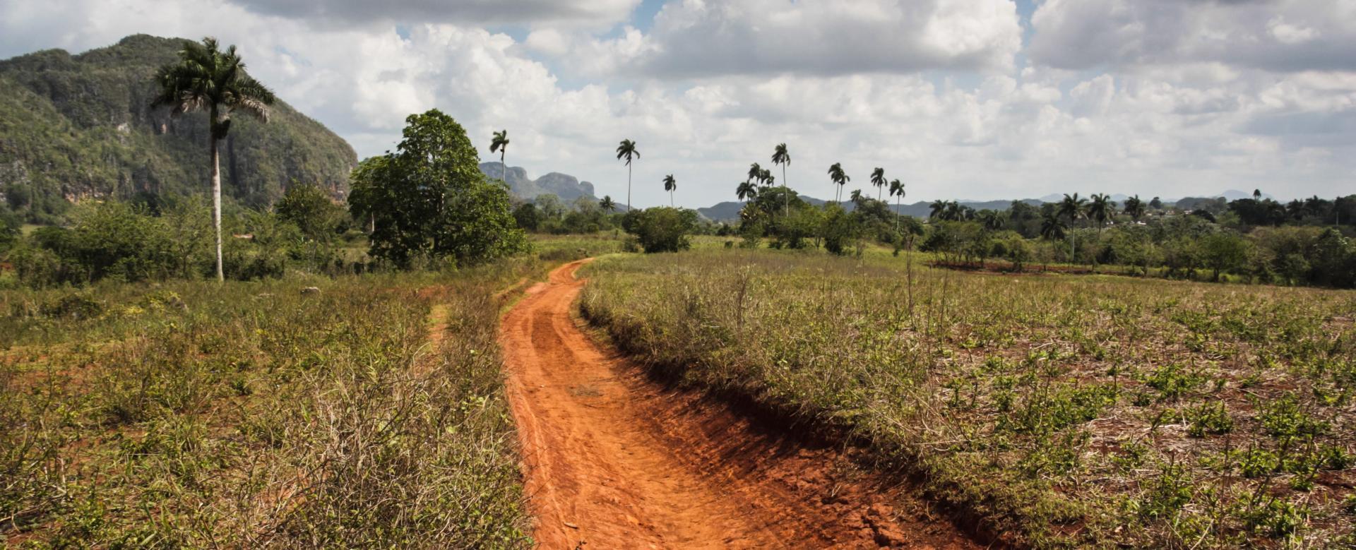 Voyage en véhicule : L'intégrale de cuba