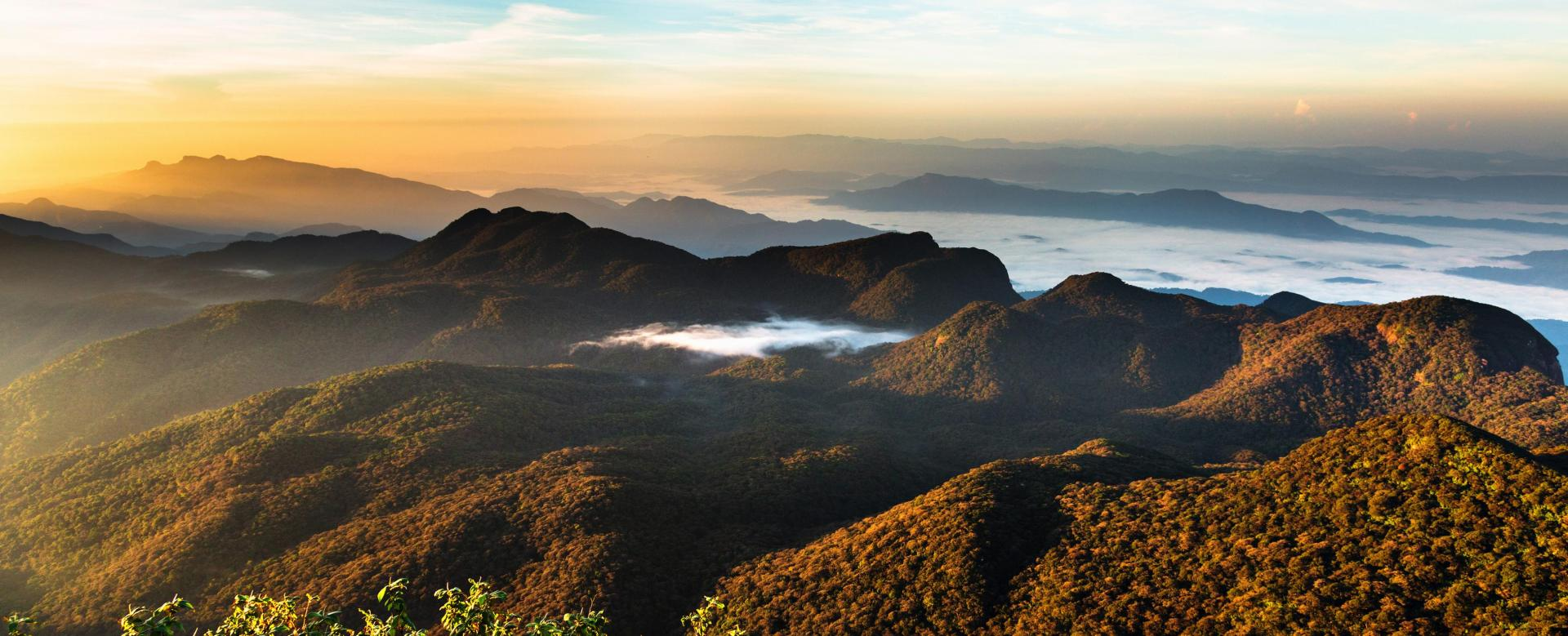 Voyage à pied : Les montagnes du thé