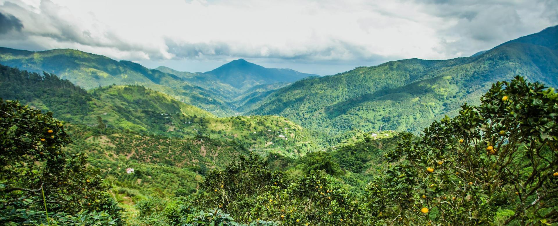 Voyage à pied : Coeur africain de la caraïbe