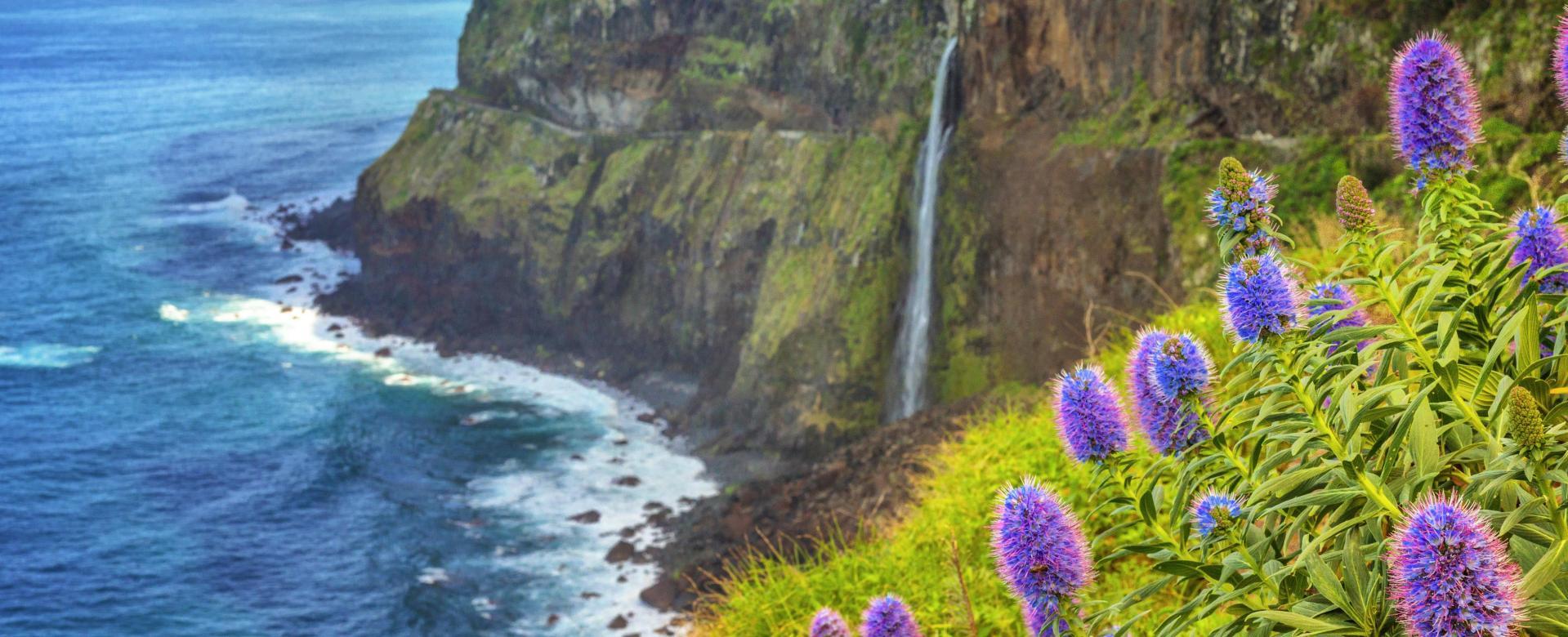 Voyage à pied : Escapade sur l'île aux fleurs