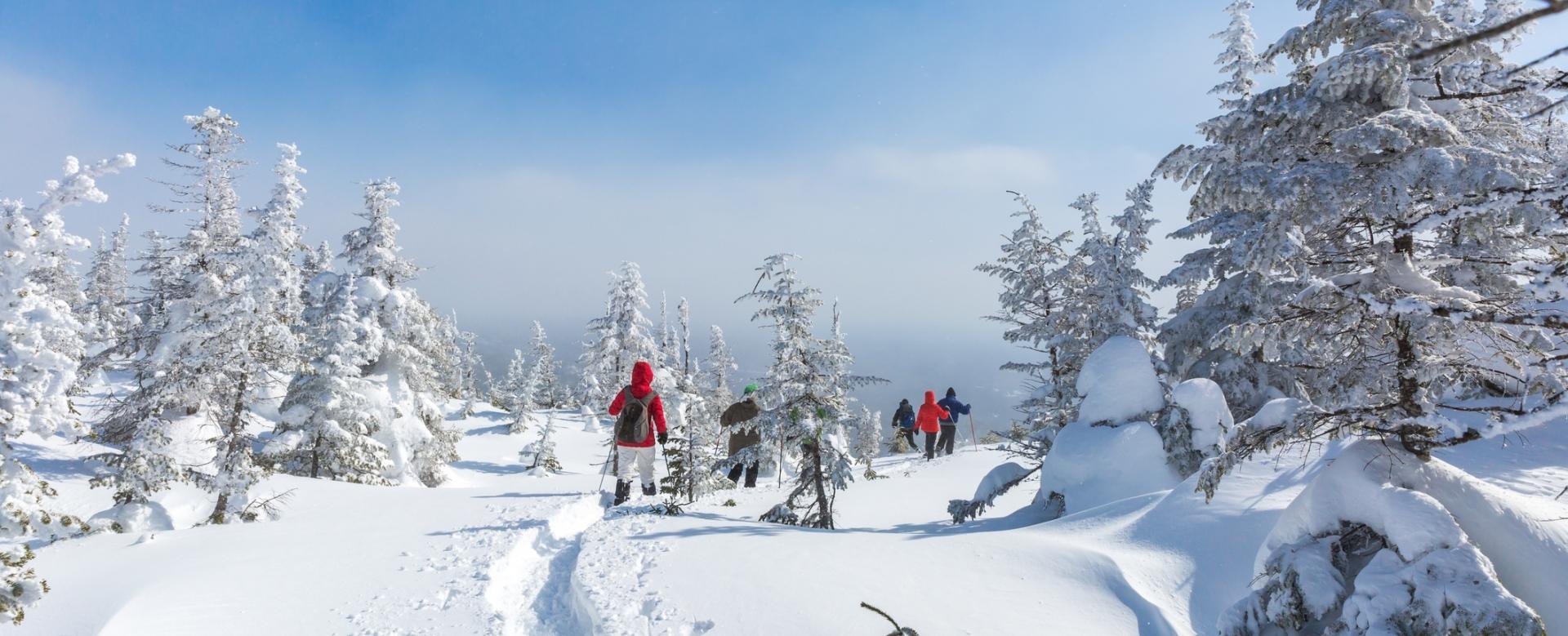 Voyage à la neige : Sur la piste des trappeurs