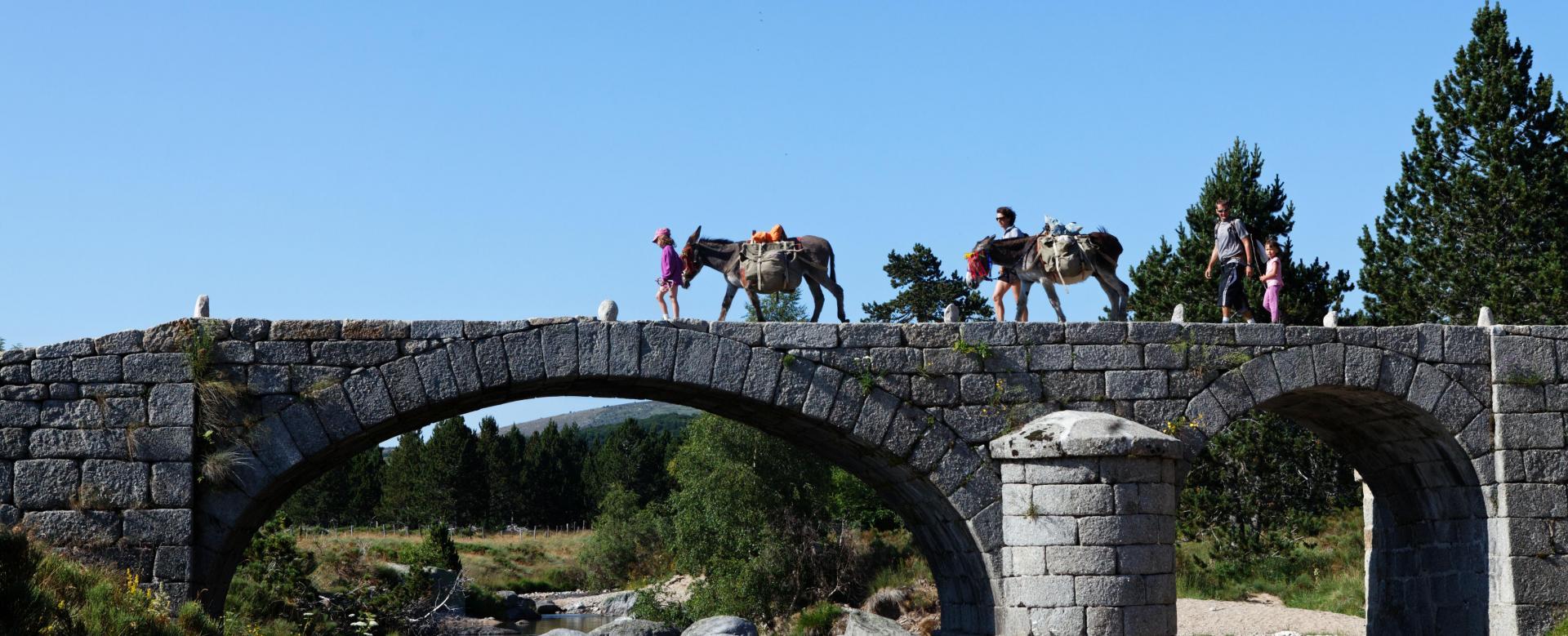 Voyage à pied : Stevenson avec un âne