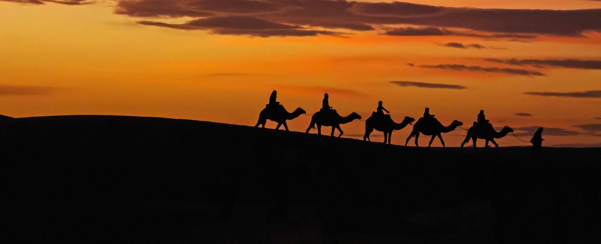 Voyage avec des animaux Maroc : Nomades du désert
