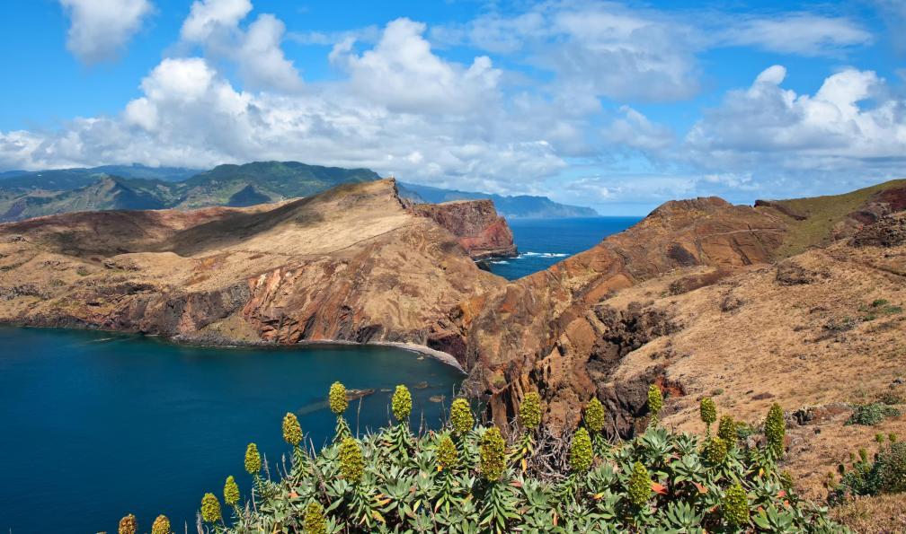 Image Des levadas de madère à l'île de porto santo