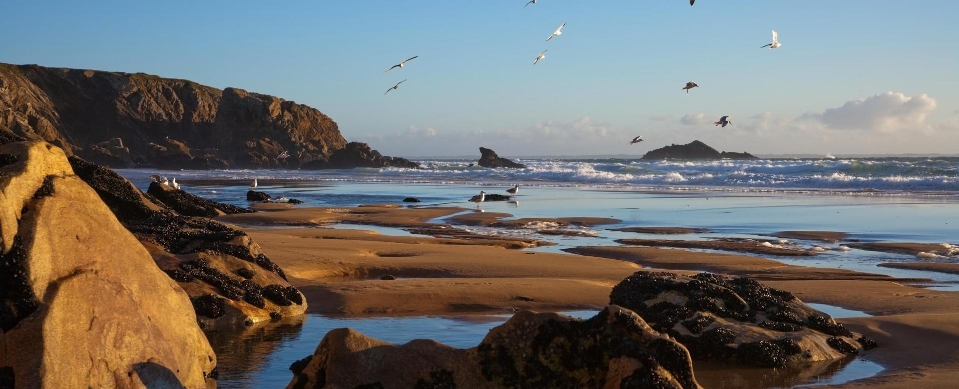 Voyage à vélo : Bretagne : Escapade à vélo dans le golfe du morbihan