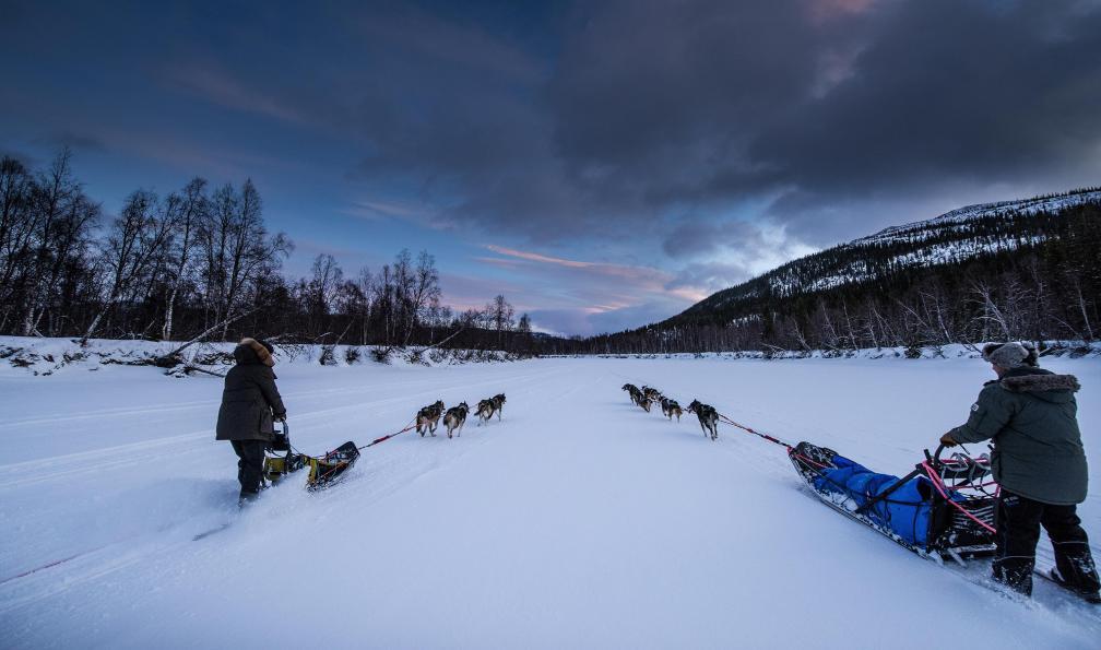 Image Laponie : immersion en traîneau