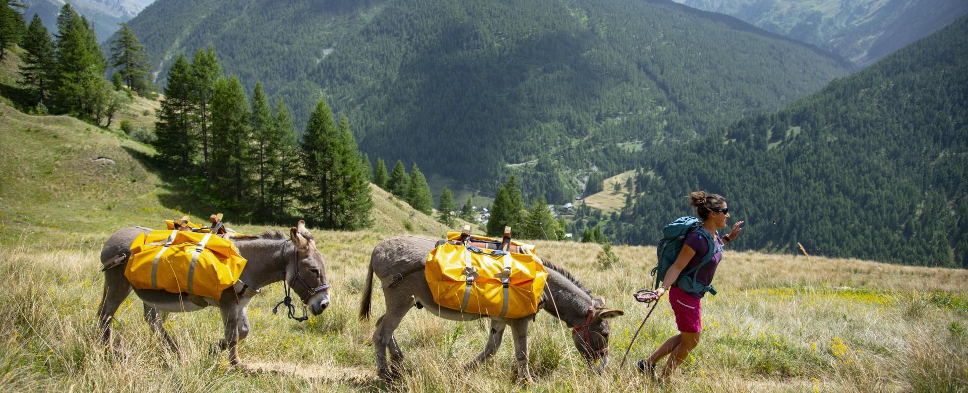 Voyage sur l'eau : Queyras, au pas de l\'âne