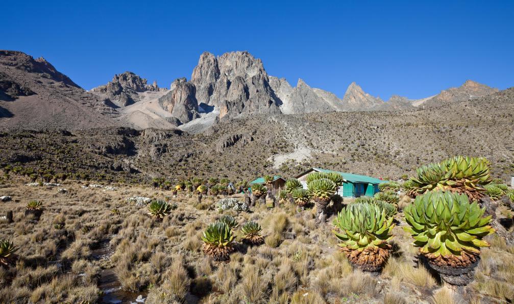 Image Mont kenya et kilimandjaro