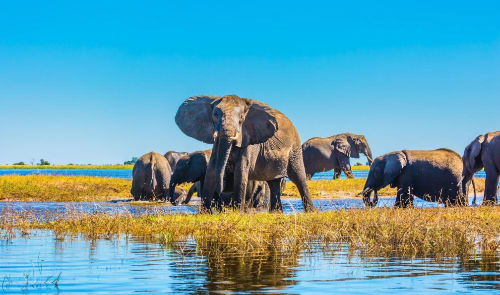 Sites de rencontres libres Botswana