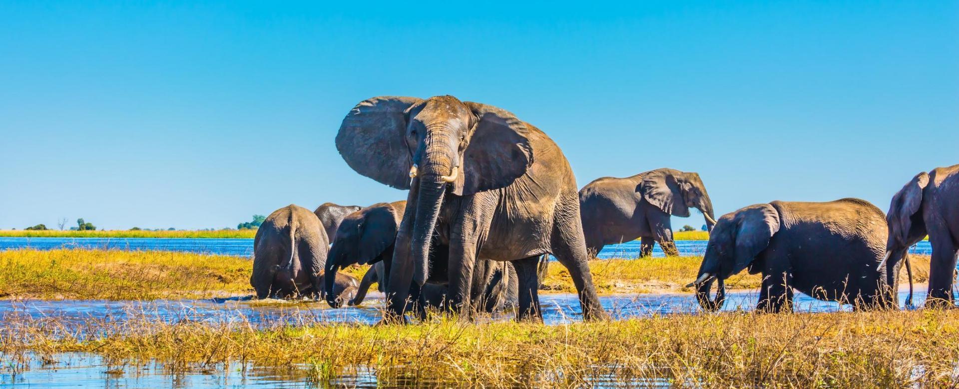 Voyage à pied : Les joyaux de l\'afrique australe en 15 jours