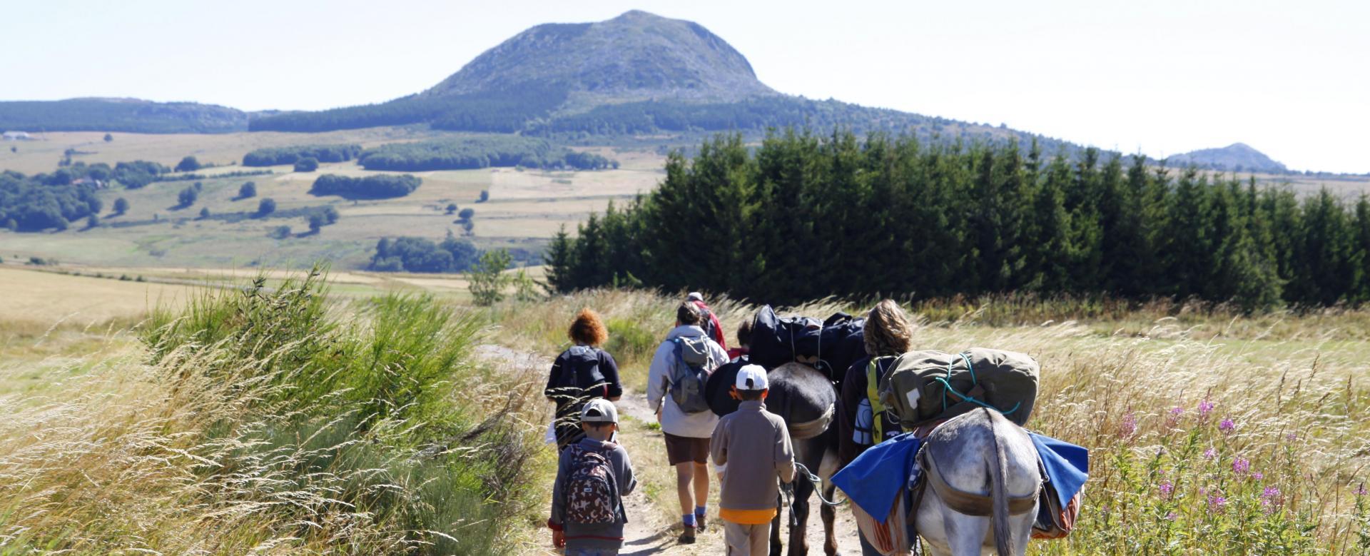 Voyage avec des animaux France : La montagne ardéchoise avec un âne