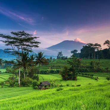 Java et Bali: au pays du sourire