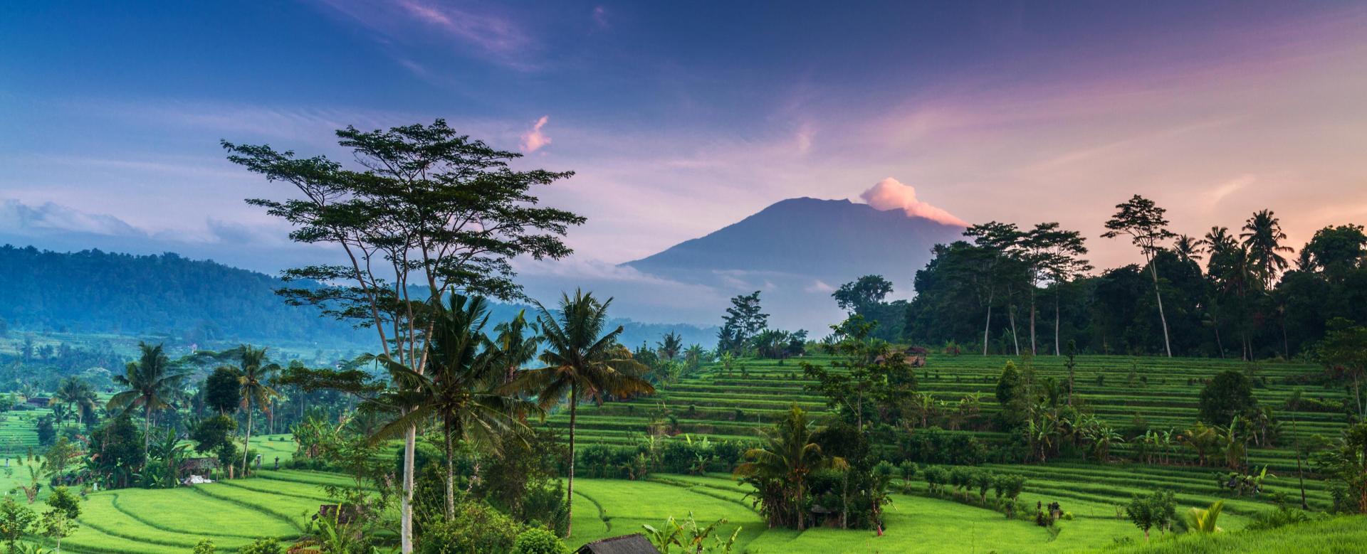 Voyage à pied : Java et bali : au pays du sourire