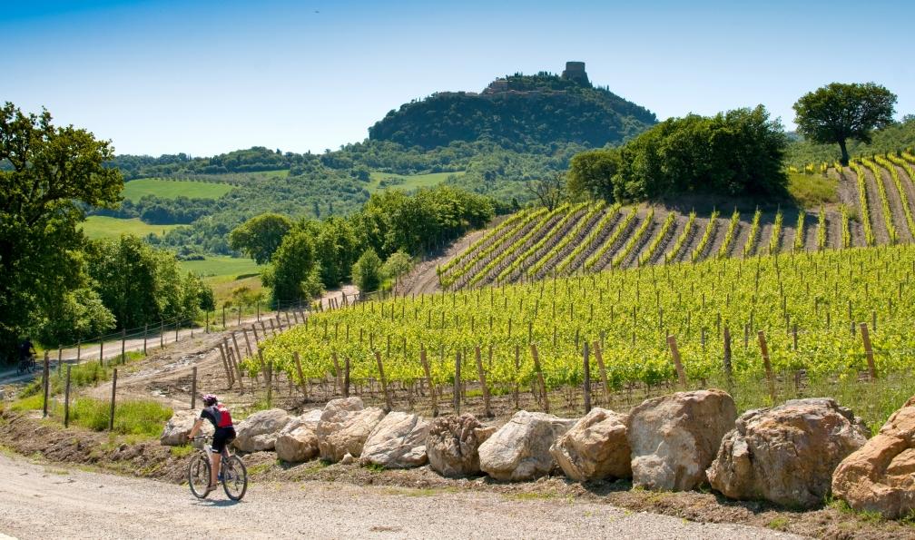 Image La via francigena à vélo : de pise à sienne