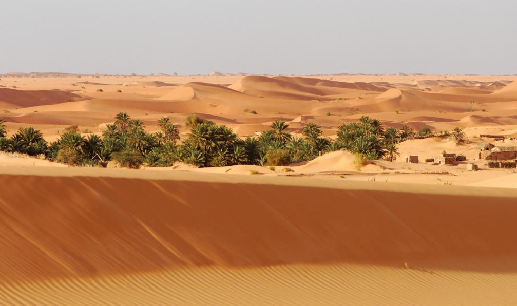 Image Panorama sur l'adrar : de ouadane à terjit