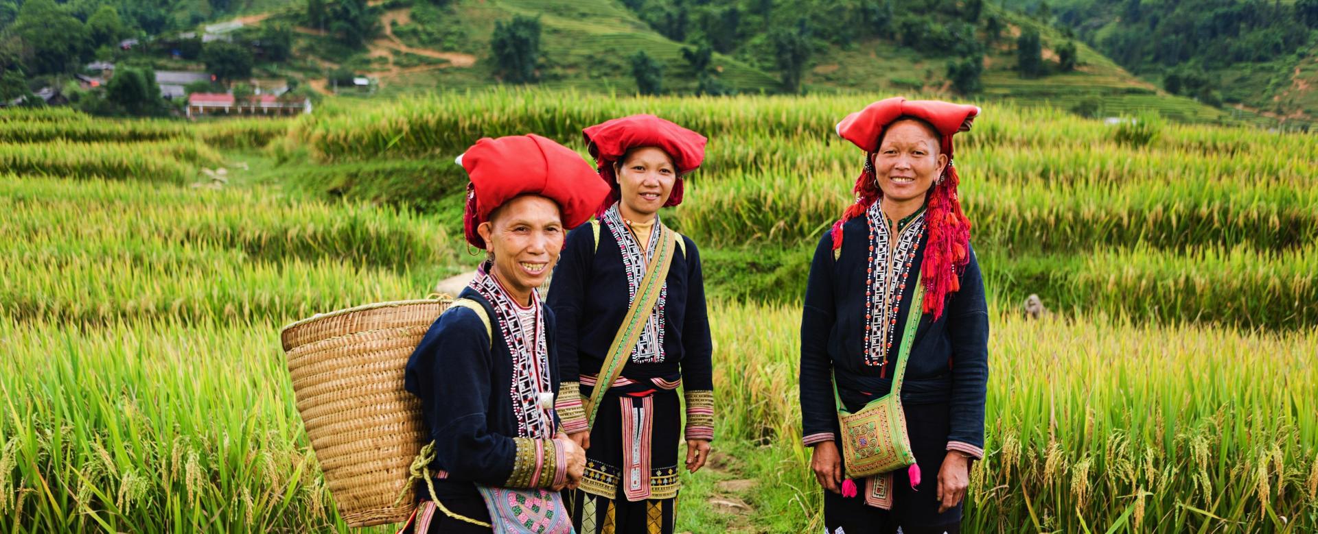Voyage à pied Vietnam : Visages et paysages du tonkin