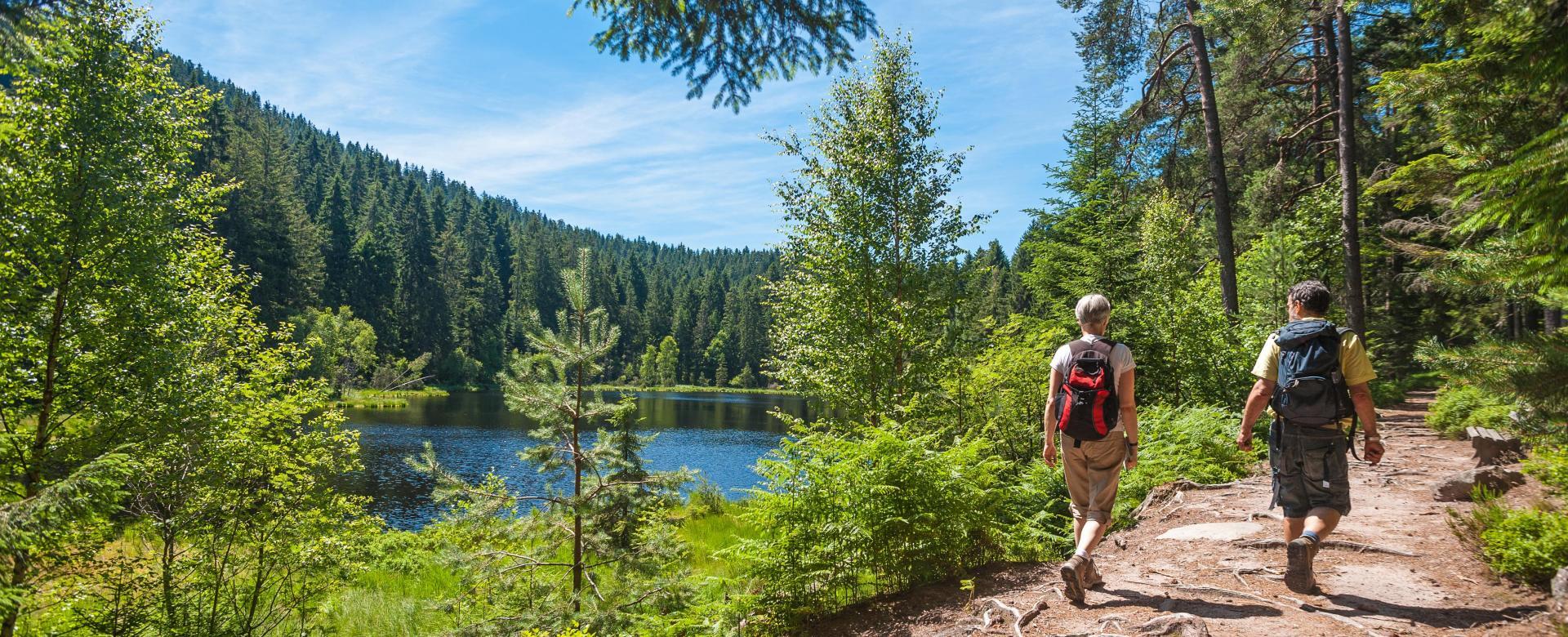 Voyage à pied Allemagne : Traversée de la forêt-noire