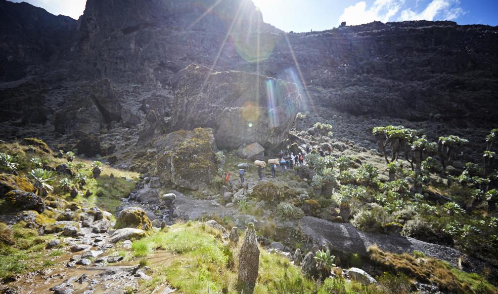 Image Kilimandjaro : voie machame