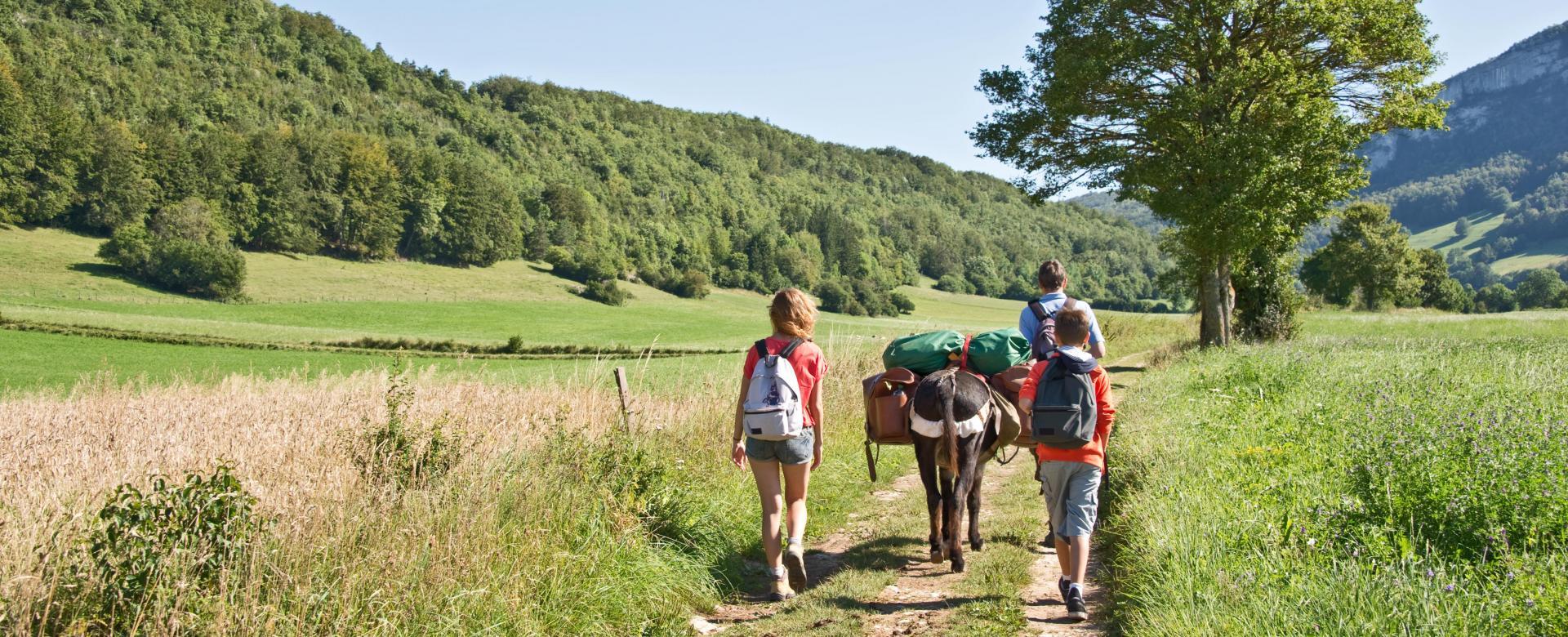 Voyage à pied : Escapade sportive entre vercors et provence
