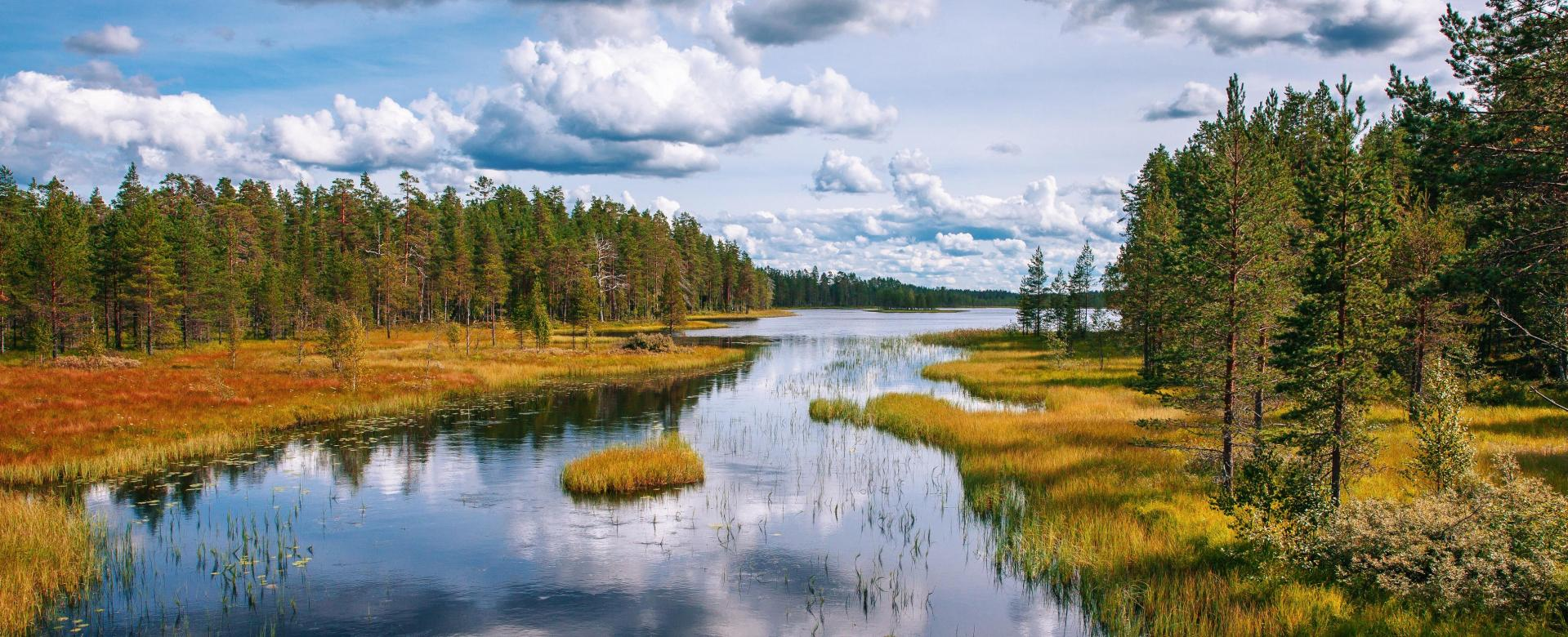 Voyage à pied : Laponie : un automne de musher