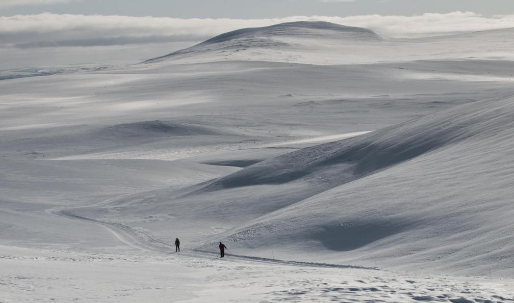 Image Traversée du hallingskarvet en ski nordique