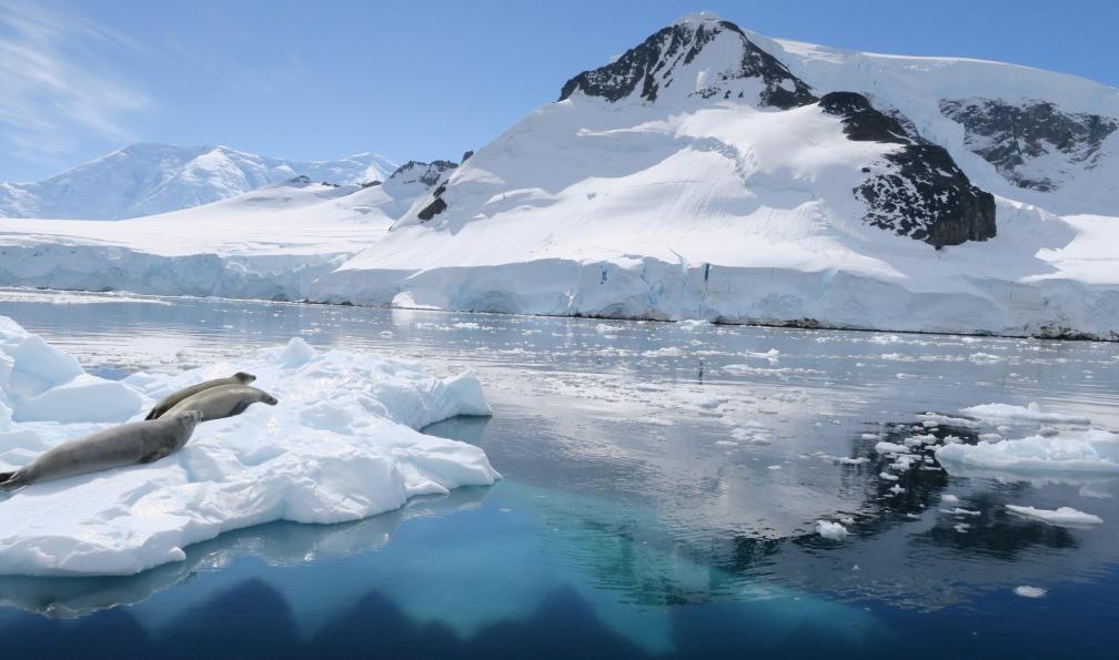 Image A la voile en antarctique