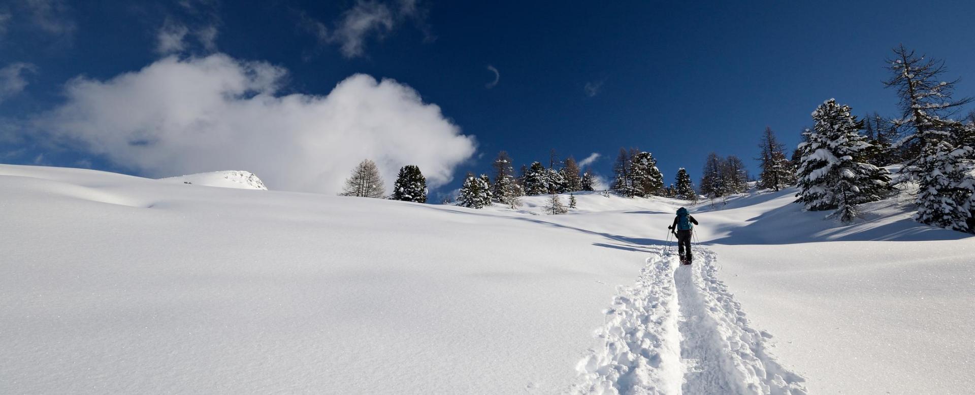 Voyage à la neige : Réveillon au pied des volcans