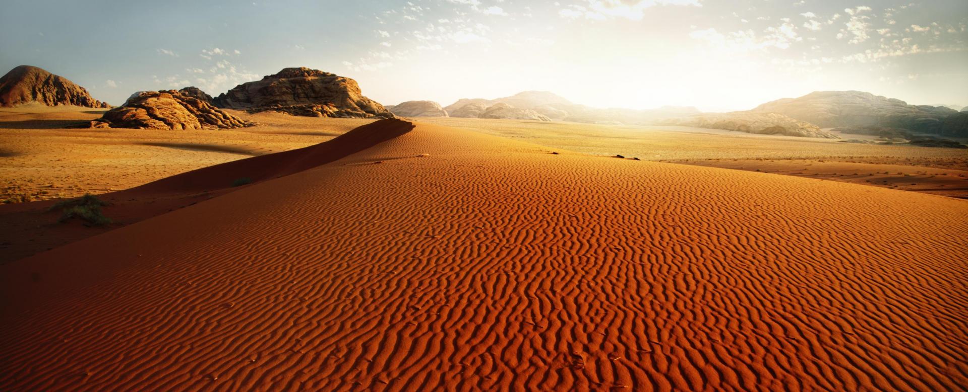 Voyage à pied : Du désert pourpre à pétra l'intemporelle