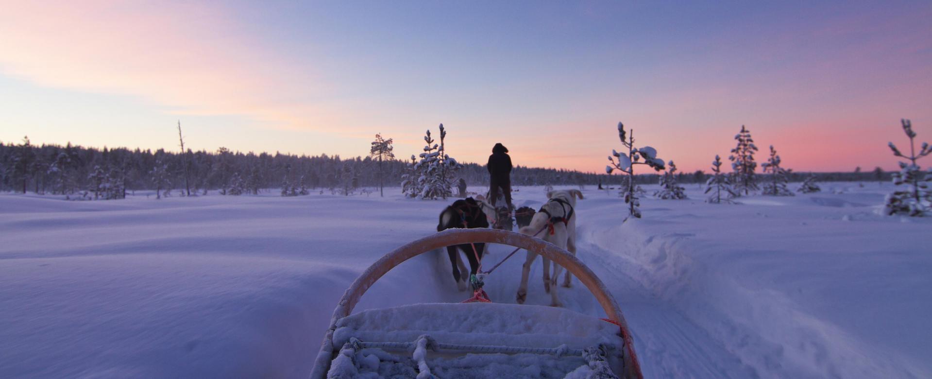 Voyage à pied : Laponie : immersion en traîneau