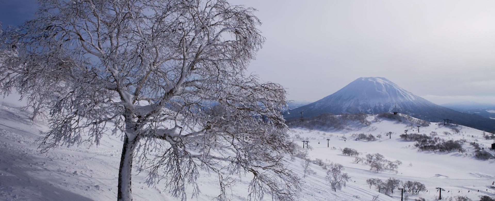 Voyage à pied Japon : La poudreuse légendaire d'hokkaido