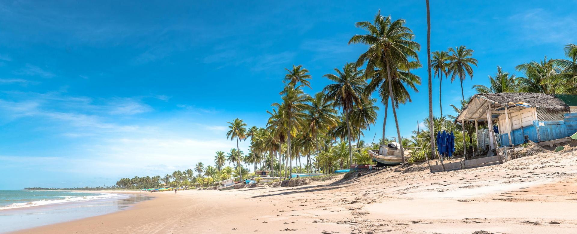 Voyage à pied : Rando et océan à bahia