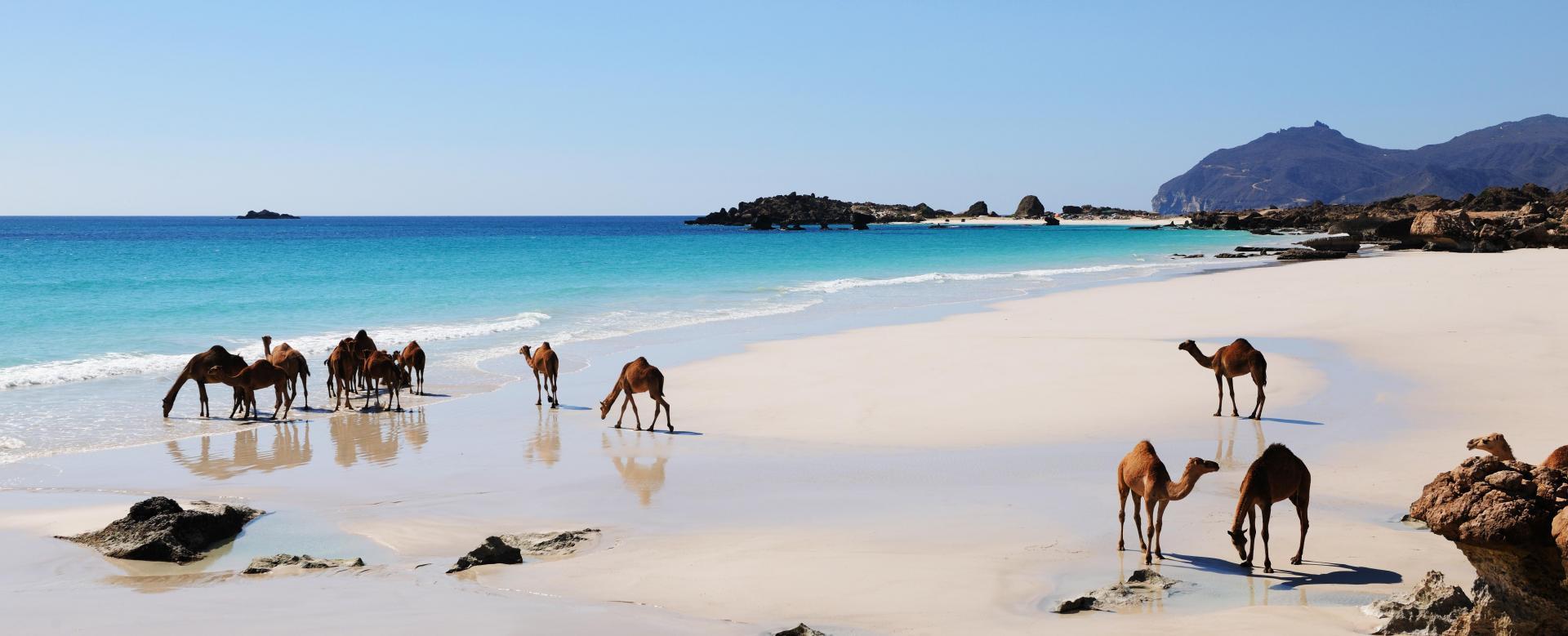 Voyage à pied : La grande traversée d'oman