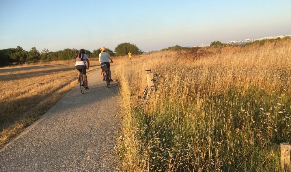 Image La vélodyssée : de la rochelle à bordeaux