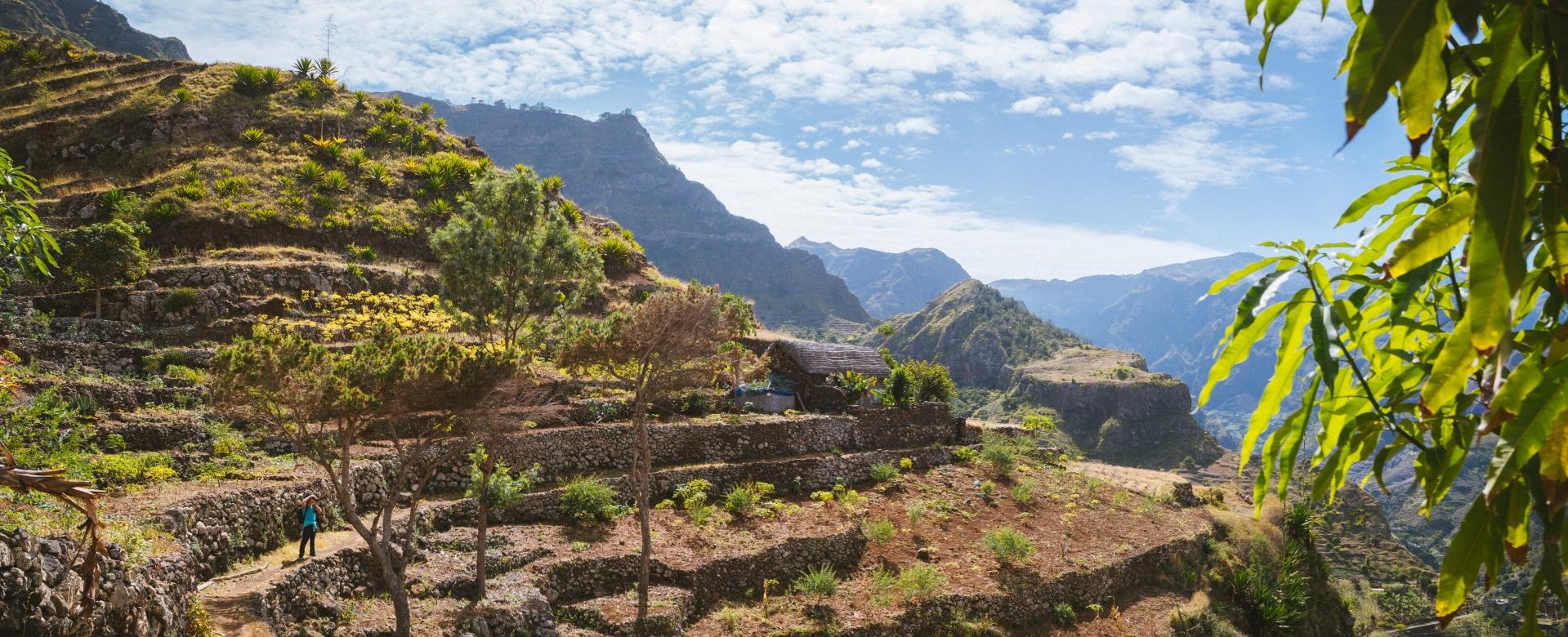 Voyage à pied : Charme créole de santo antao