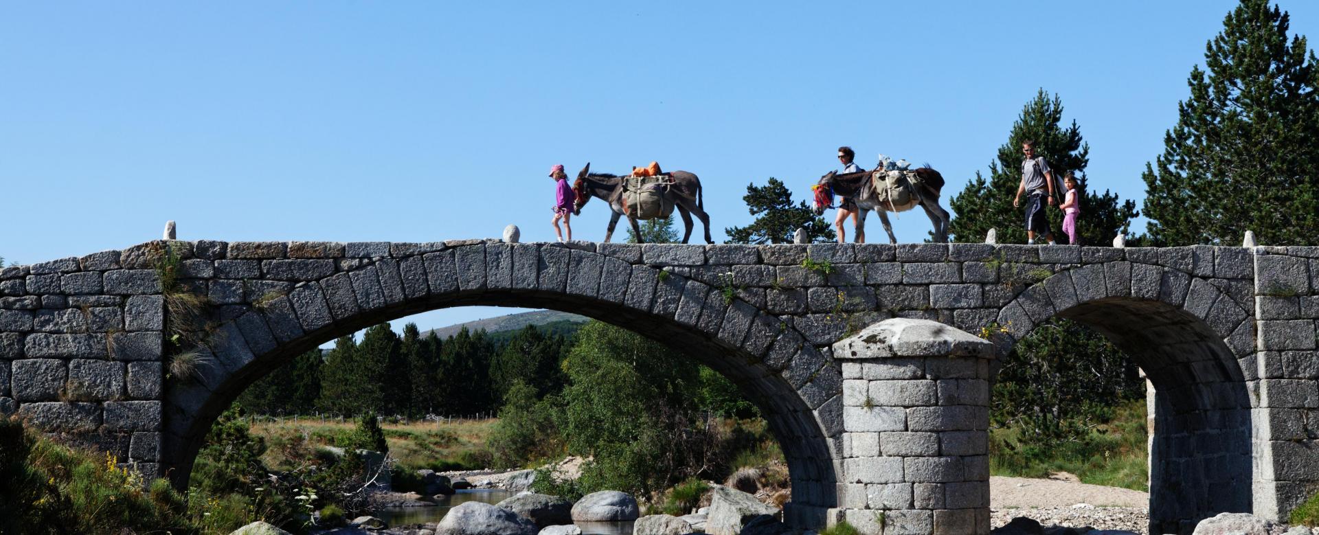 Voyage avec des animaux France : Stevenson avec un âne