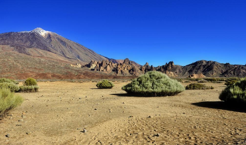 Image Tenerife, l'éternel printemps
