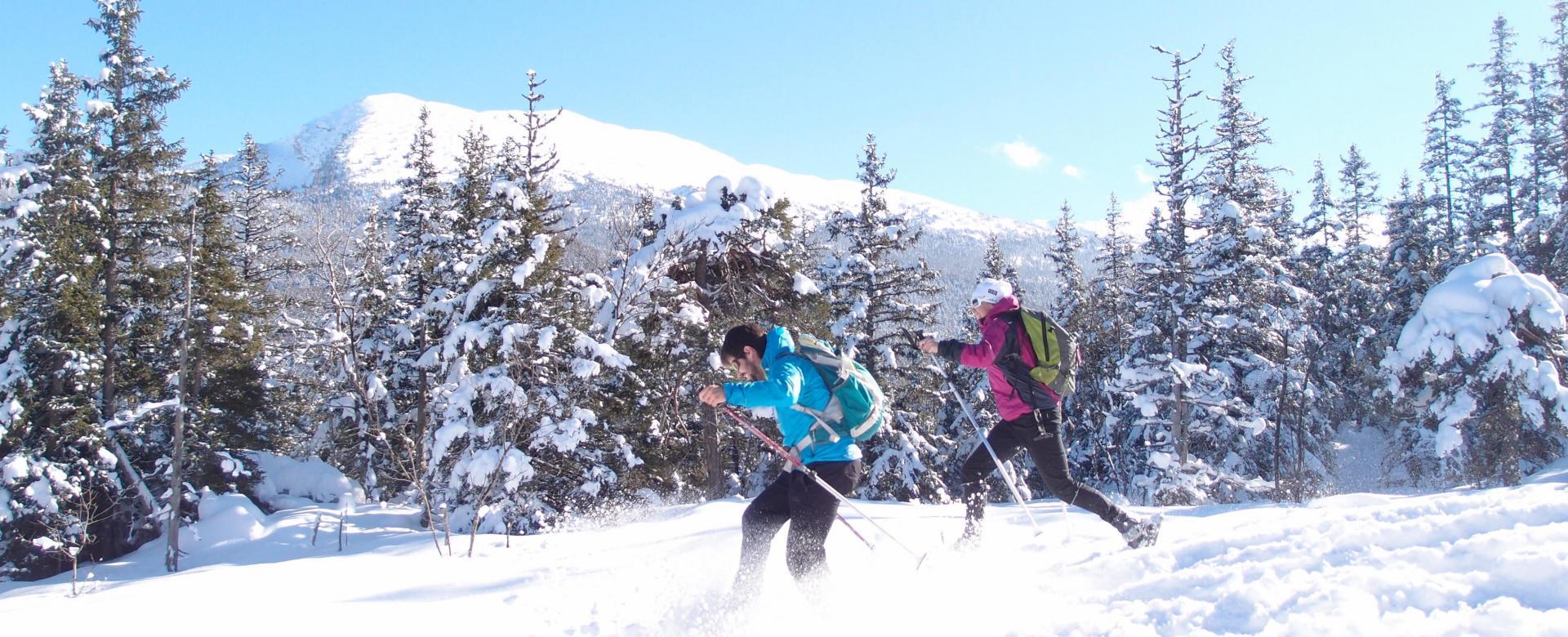 Voyage à la neige : Détente hivernale en vercors