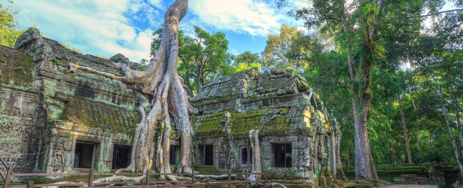 Voyage à pied : L\'intégrale du viêtnam et les temples d\'angkor