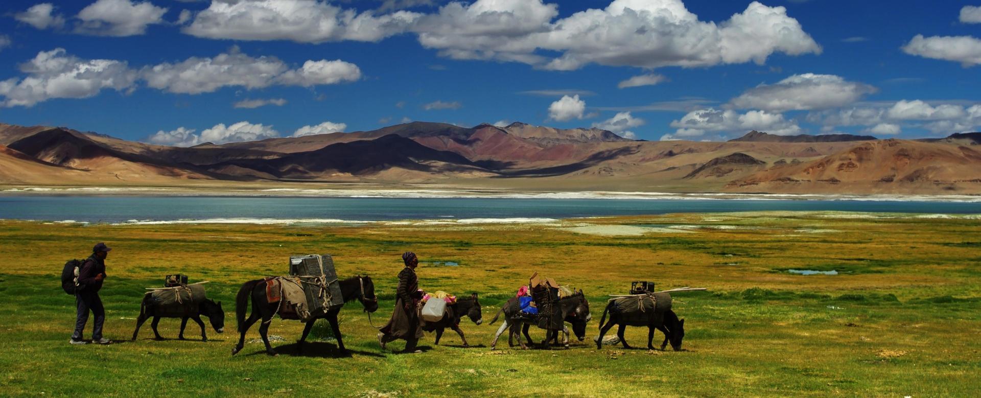 Voyage à pied Inde : Grand trek ladakhi, de l'indus au tsomoriri