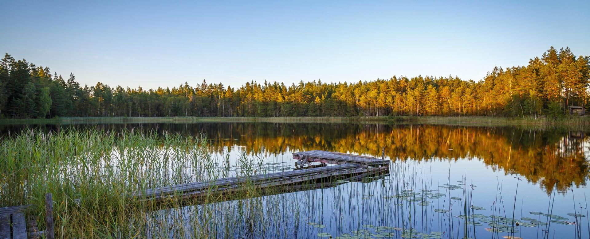 Voyage à pied : Concentré d'activités en laponie suédoise