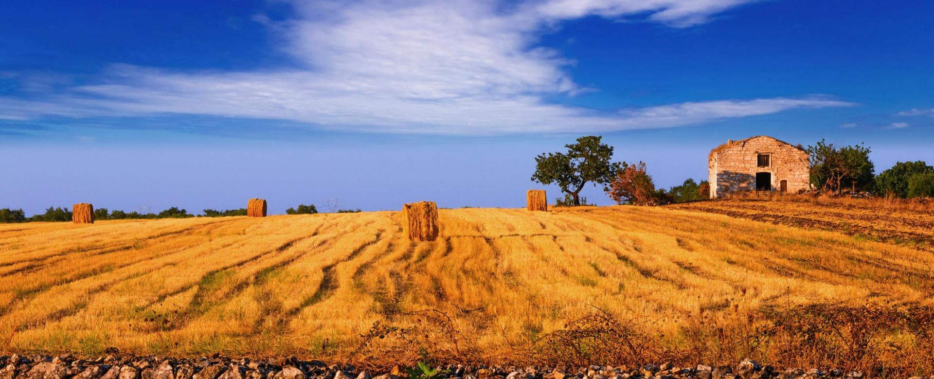 Trekking Italie : Splendeurs des pouilles