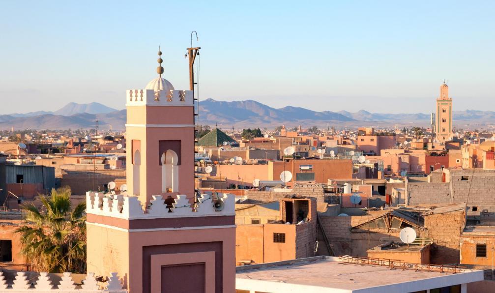Image Les roses du m'goun - marrakech