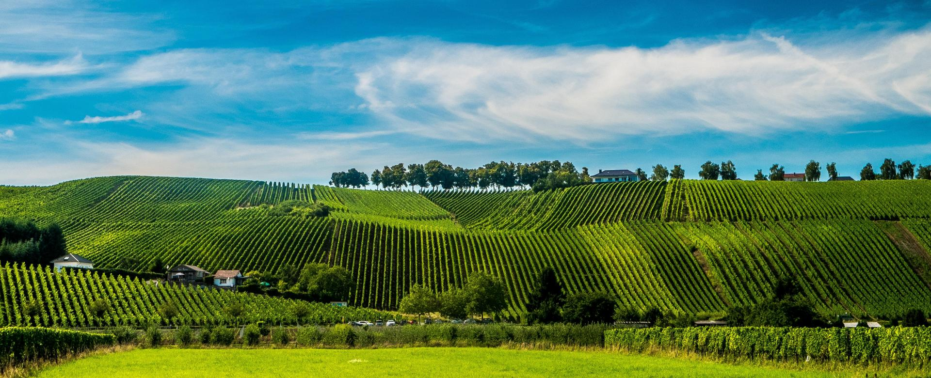 Voyage à pied : Le grand-duché de luxembourg